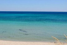 Masseria Scorcialupi_the sea